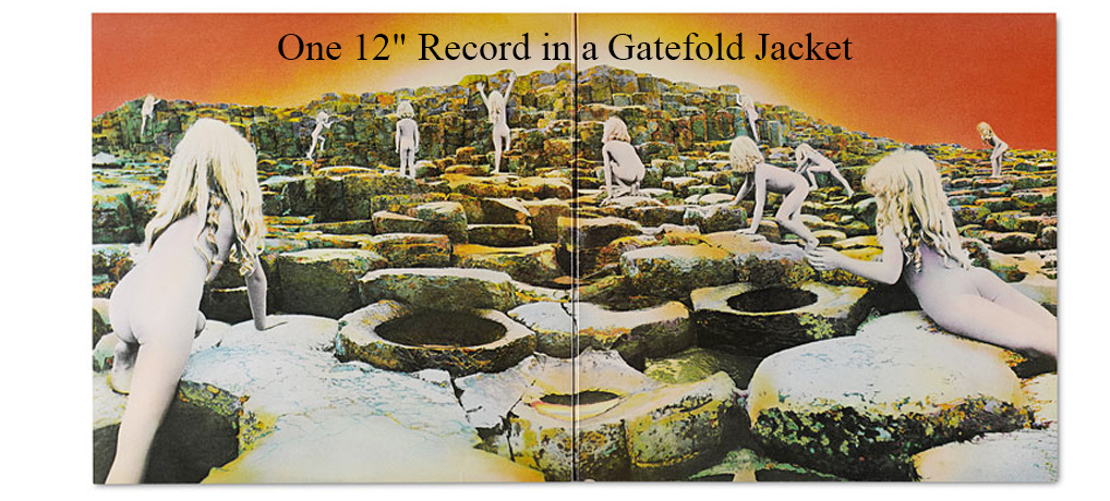 "One 12"" Record in a Gatefold Jacket"
